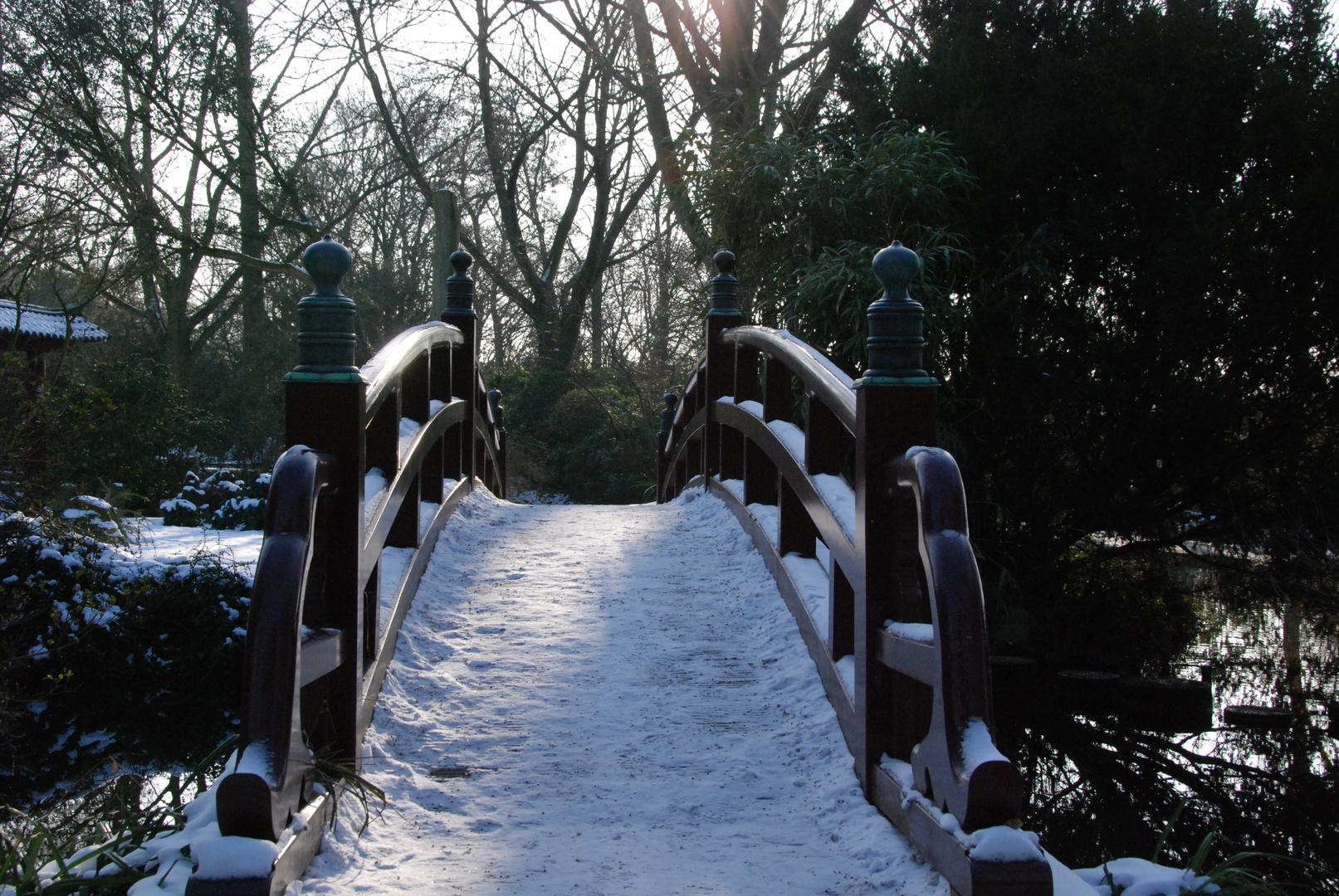 Japanischer Garten Leverkusen - 14.01.2010 - Brücke