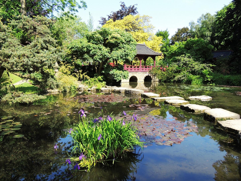 Japanischer Garten Leverkusen Foto Bild Landschaft Garten