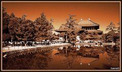 JAPON AÑO 2010