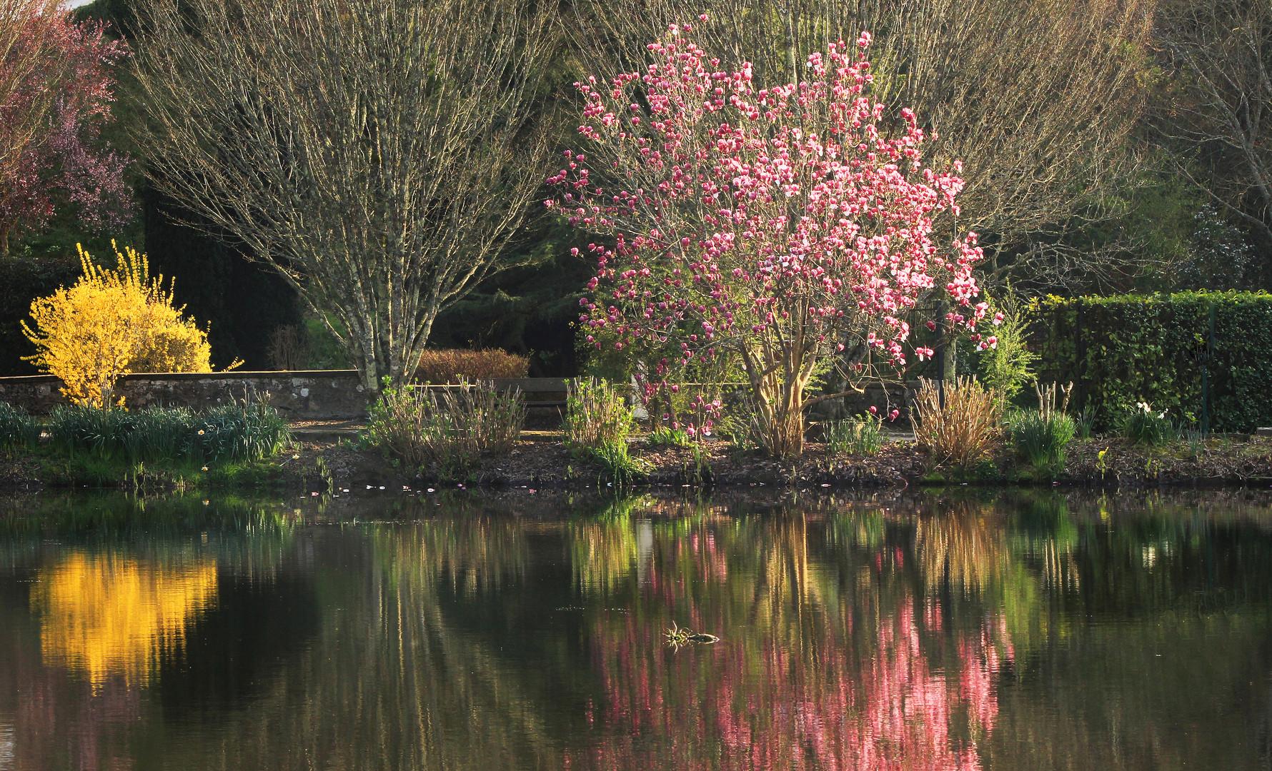 Jardin Amarante