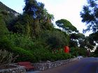 jardin botanico de Gibraltar
