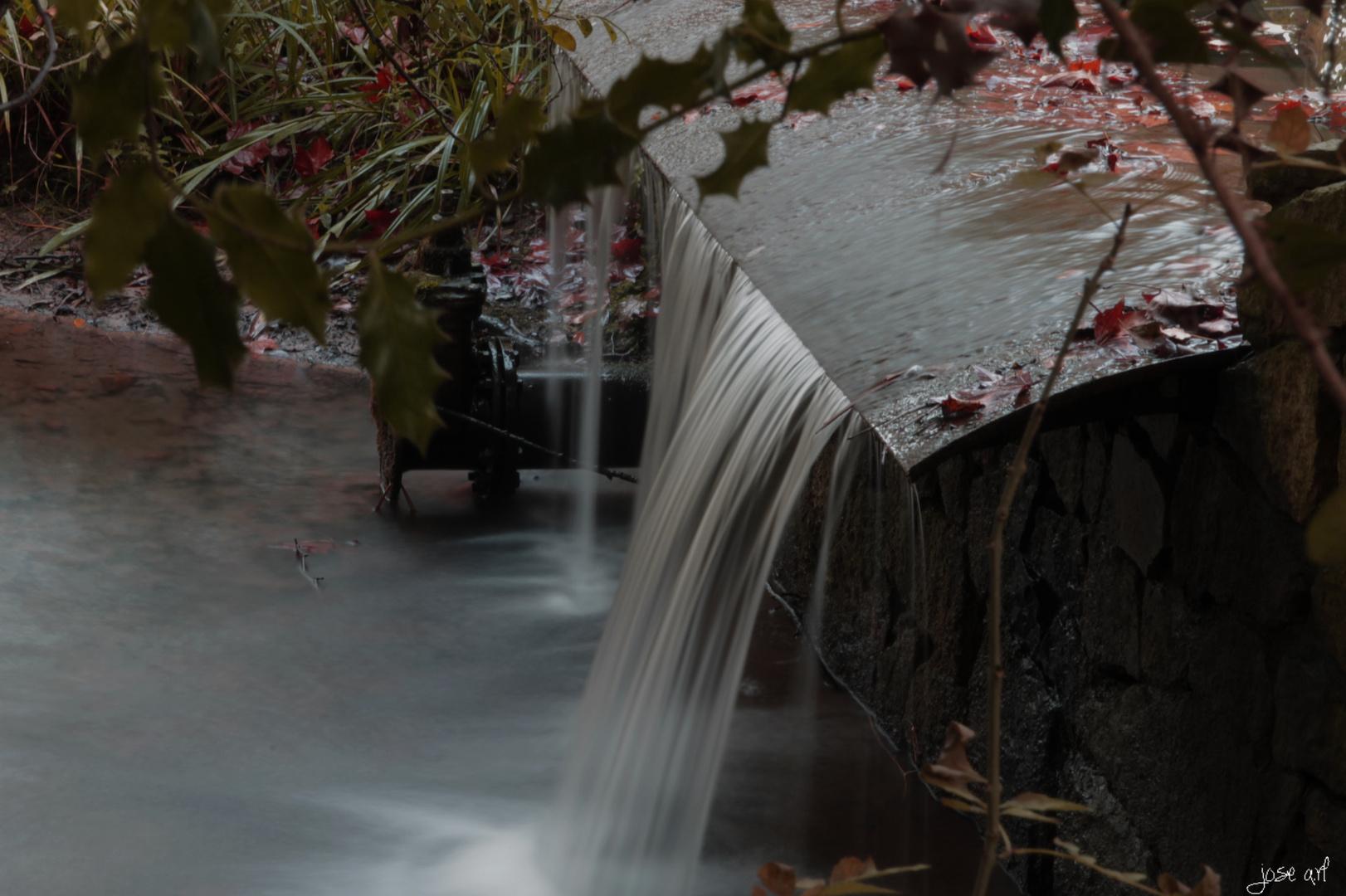 Jardin Botanico Gijon Imagen Foto Plantas Naturaleza Fotos De