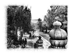 Jardin d'Asie. 4