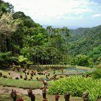 Jardin de Balata -2-