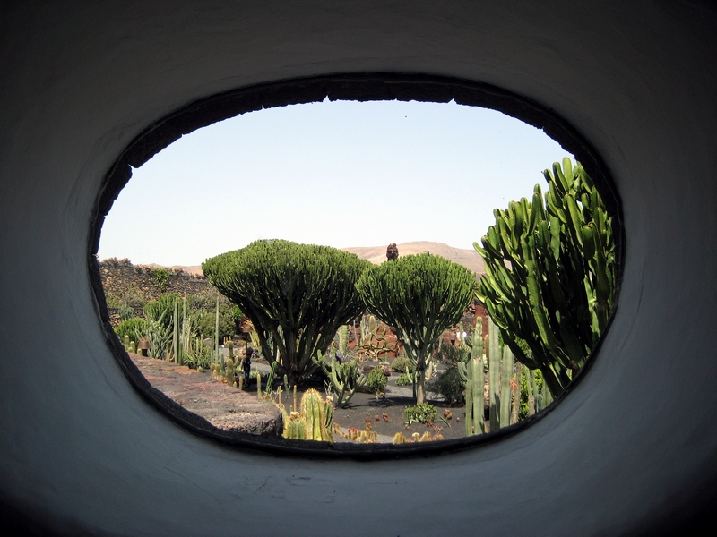 Jardin de Cactus auf Lanzarote