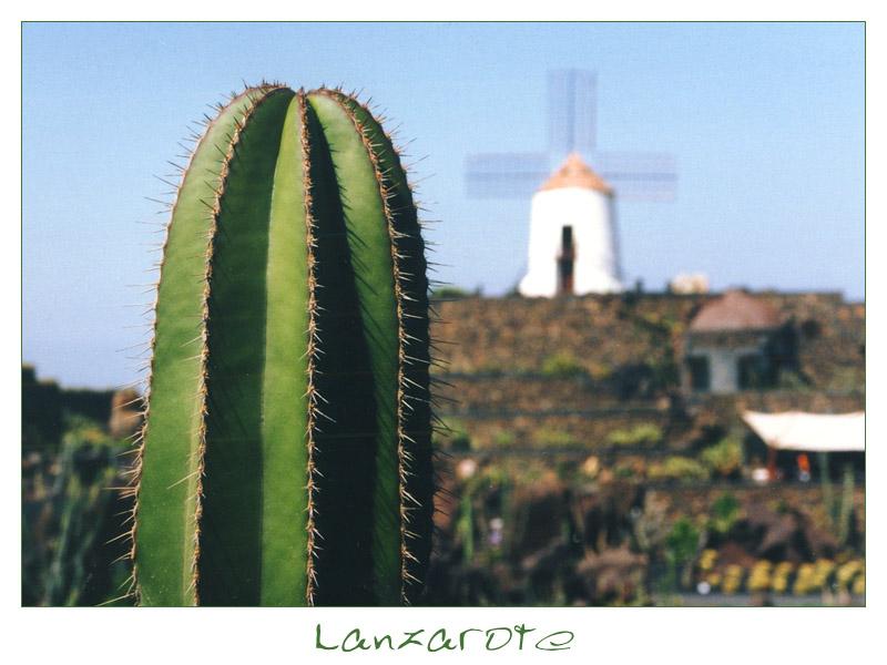 | | Jardín de Cactus | | Guatiza | | #1