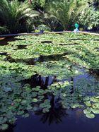 jardin de majorelle 1