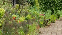 Jardin la plume,France