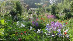 Jardin Monet, France