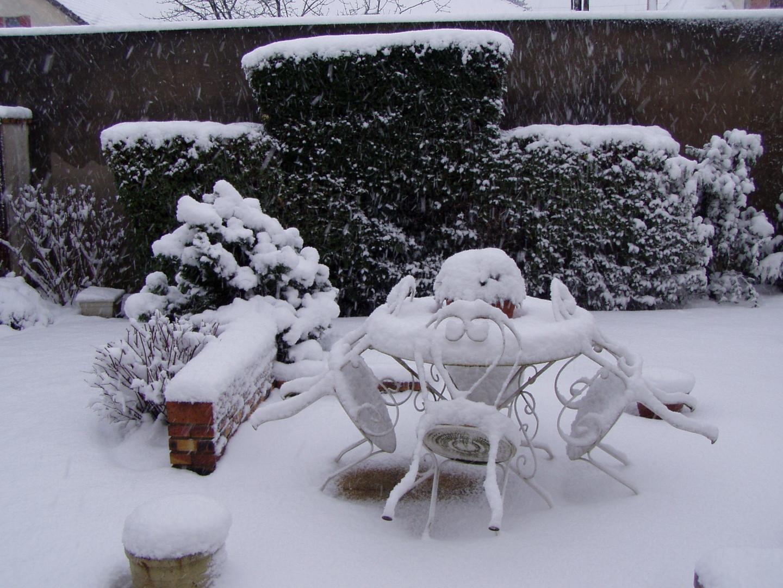 jardin sous la neige 20013