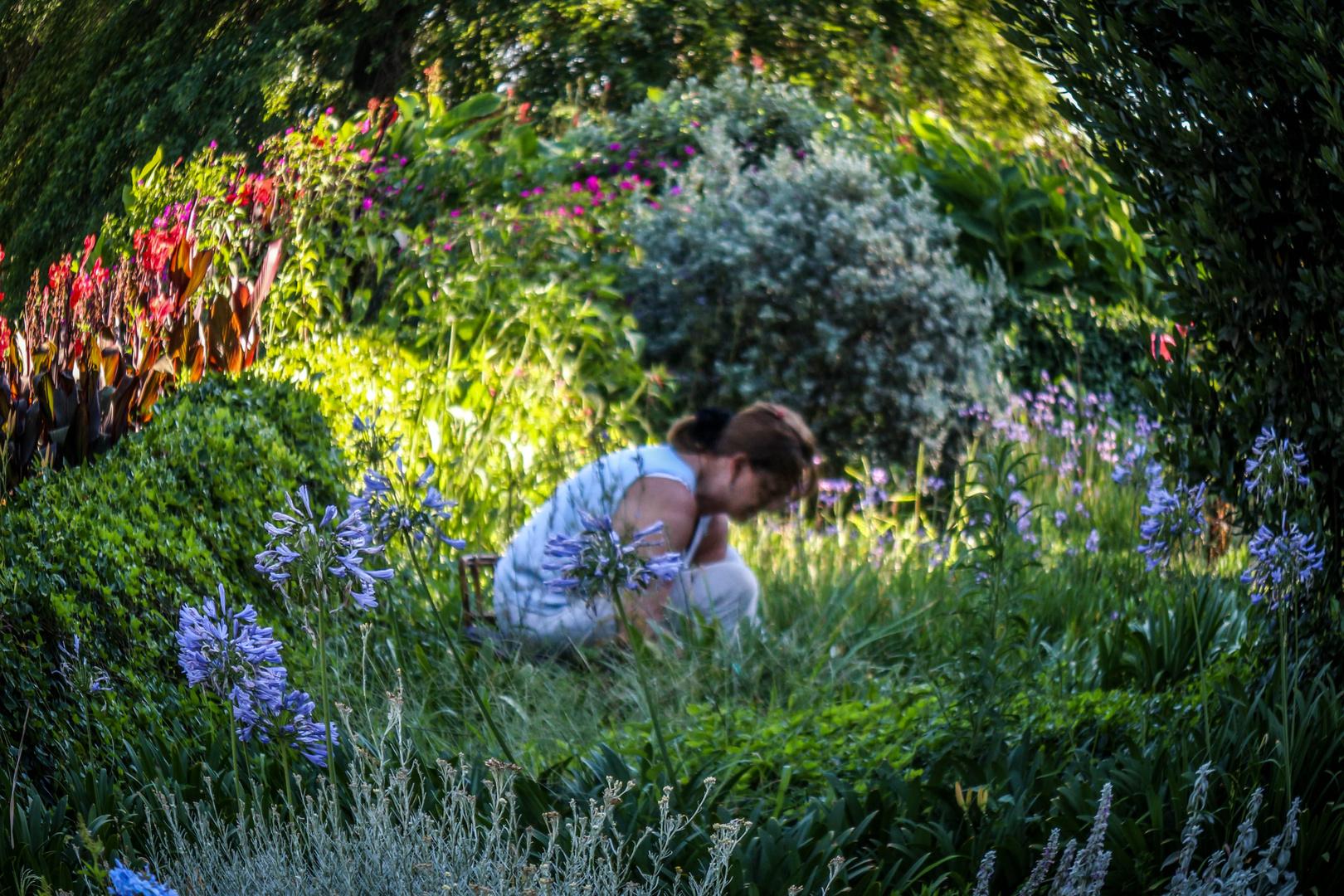 Jardinera en su jardín II