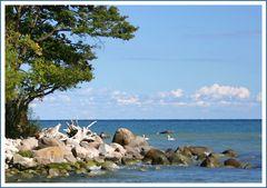 Jasmund...stille Bucht