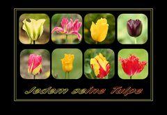jedem seine Tulpe