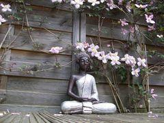 jedem seinen buddha