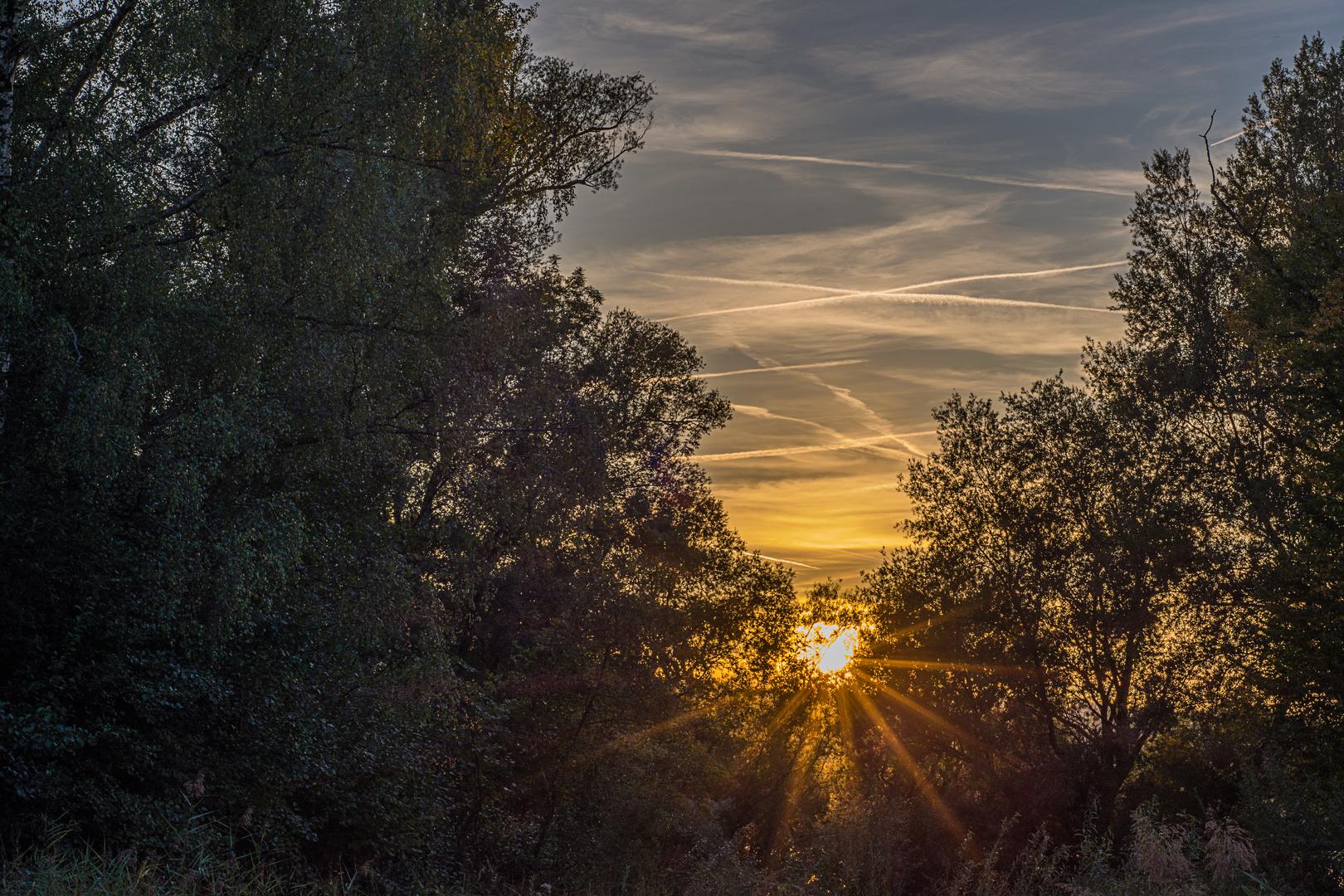 Jeden Tag Geht Die Sonne Unter Foto Bild Landschaft