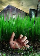 Jeder hat seine Leiche im.......Garten