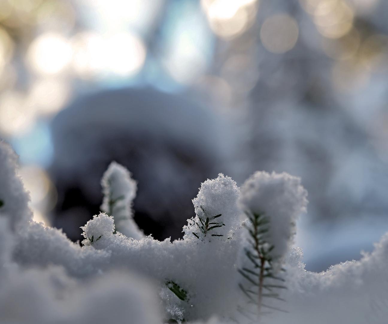 Jeder Moment des Glücks ist ein Geschenk! - Réjouissons-nous de chaque moment lumineux et heureux!
