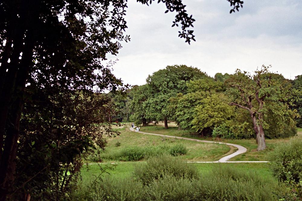 Jenischpark III