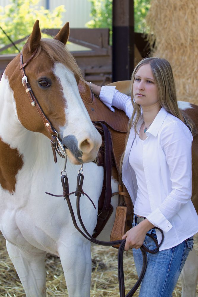 Pferd Jenny