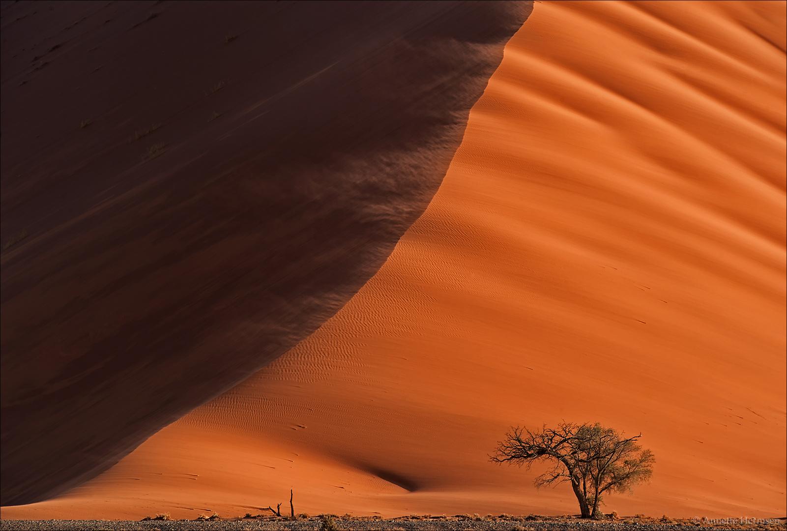 Jenseits von Afrika [20] - Windy days