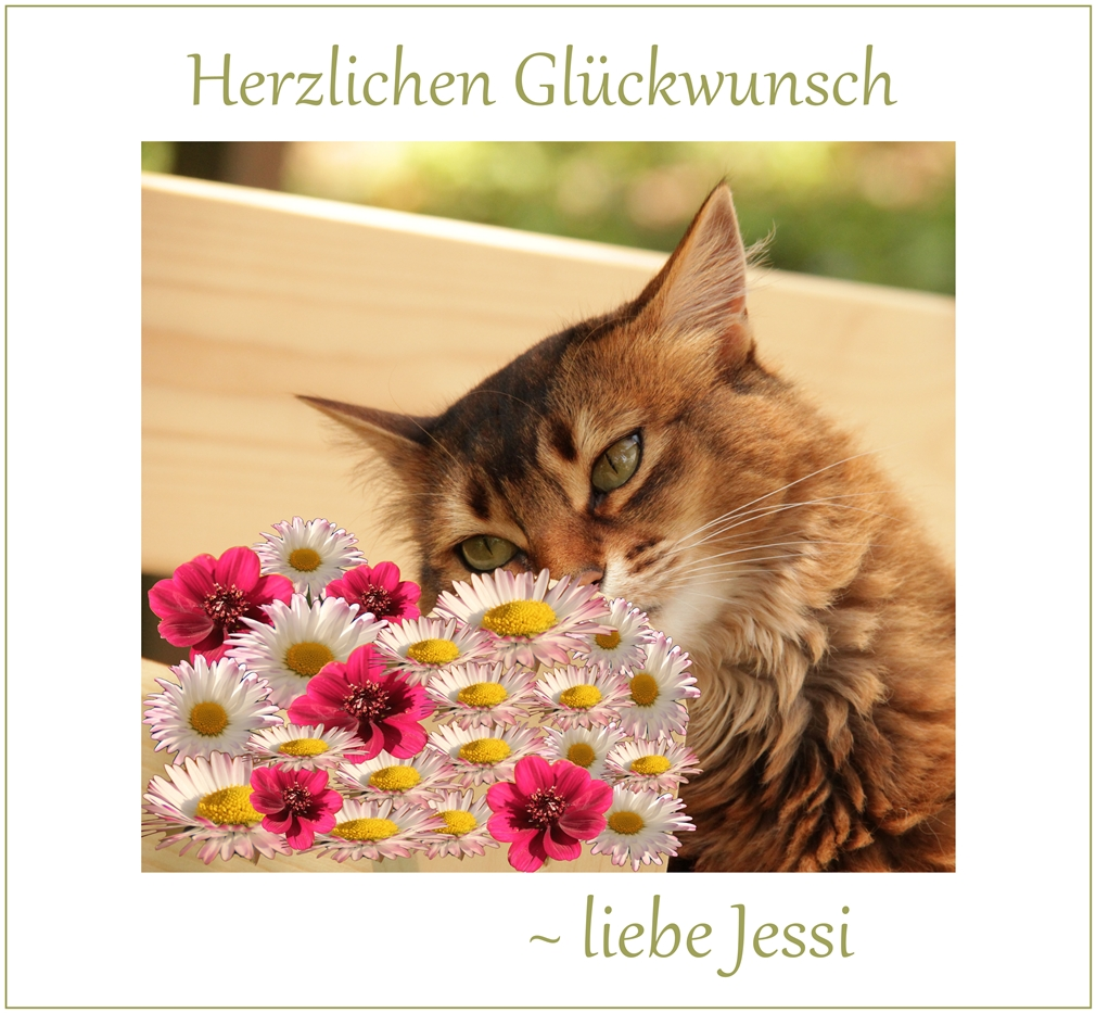 Jessi hat Geburtstag