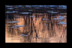 ...jetzt aber... - ein Winterbild... ! - Teller-Eis an der Weser...
