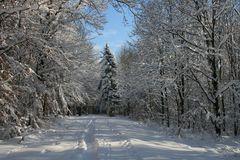 Jetzt ist der Winter
