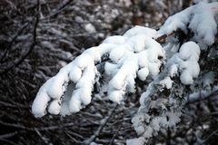 jetzt ist offiziell Winter