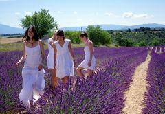 Jeunes filles en fleurs .....