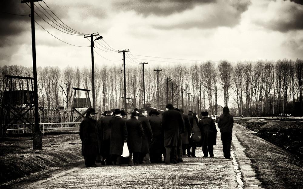 Jews in Birkenau