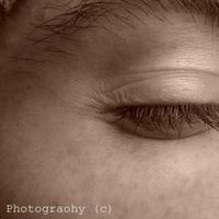 Job's Photography