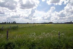 Johannisburger Heide