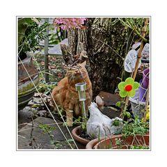 Johannneskraut sucht im Garten nach Ostereiern, die der Osterhase dort versteckt hat