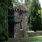 ... Johnstown Castle VI ...
