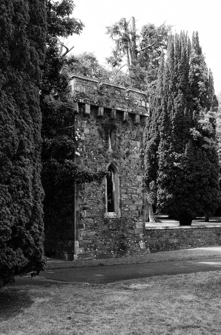 ... Johnstown Castle VI s/w ...