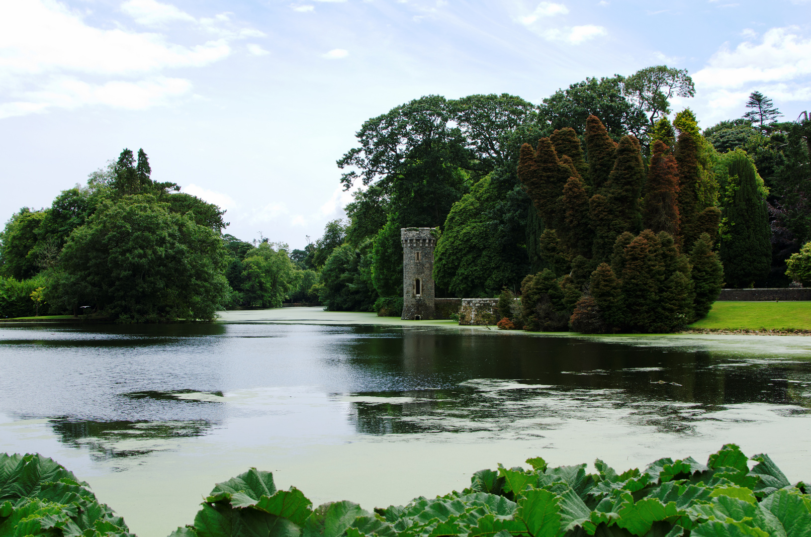 ... Johnstown Castle VII ...