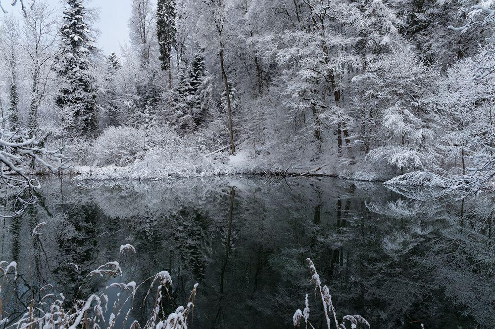 Jordenweiher_Jan19-4