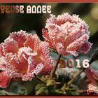 Joyeuse année 2016 !!