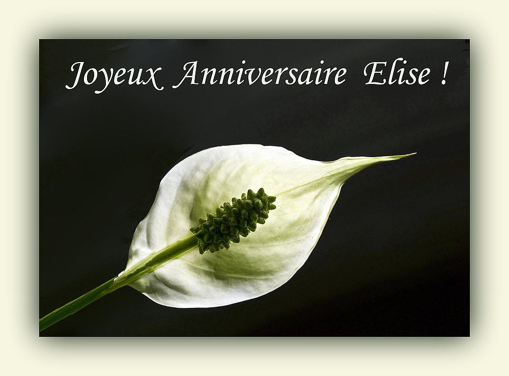 Joyeux Anniversaire Elise Photo Et Image Images Fotocommunity