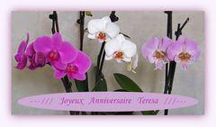 Joyeux Anniversaire Teresa