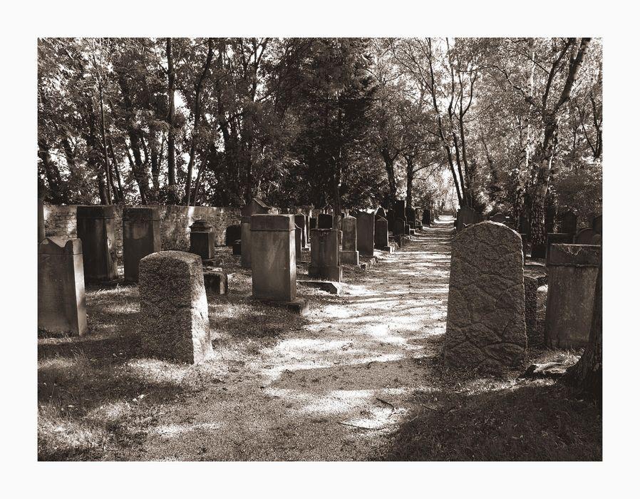 Jüdischer Friedhof Bad Soden