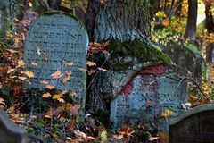 Jüdischer Friedhof Bingen