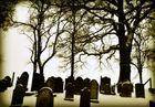 jüdischer Friedhof, cimitero ebraico