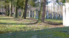 Jüdischer Friedhof Freudental II