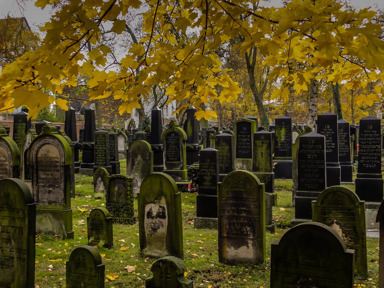 Jüdischer Friedhof - Hannover-Nordstadt