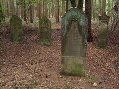 Jüdischer Friedhof in der Wingst