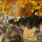 Jüdischer Friedhof in Worms
