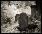 Jüdischer Friedhof Marsberg
