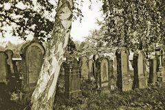 Jüdischer Friedhof Michelbach