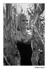Julchen im Mais